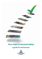Your Steps to Chemical Safety front page preview