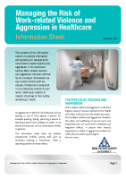 Violence in Healthcare Information Sheet front page preview